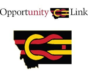 Opportunity Link